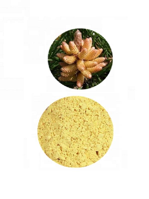 Organic Pine Pollen Powder